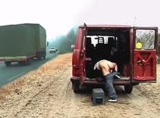 Polvo cerdo en medio de la autopista con una golfa